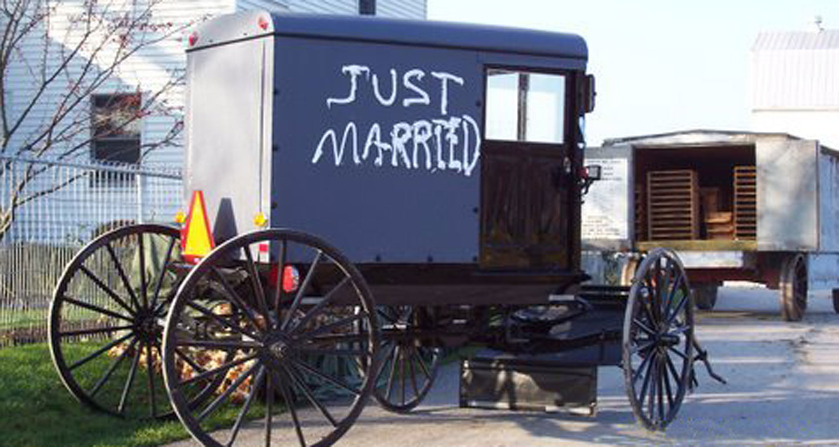 AmishWeddingBuggy-1680x896