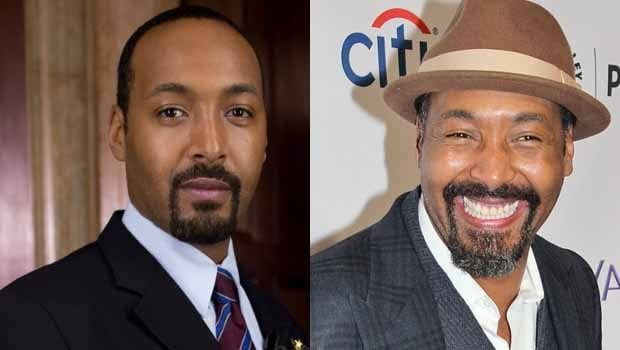 law and order stars where are they now kiwireport