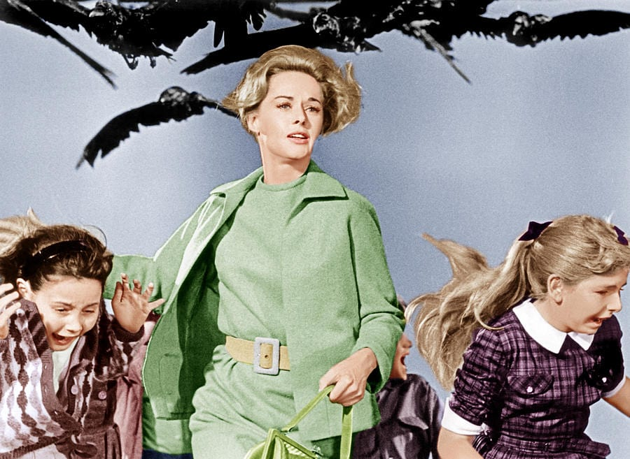 the-birds-tippi-hedren-center-1963-everett