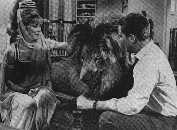jeannie-and-lion