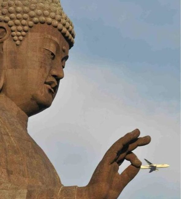 perfectly-timed-photos-12