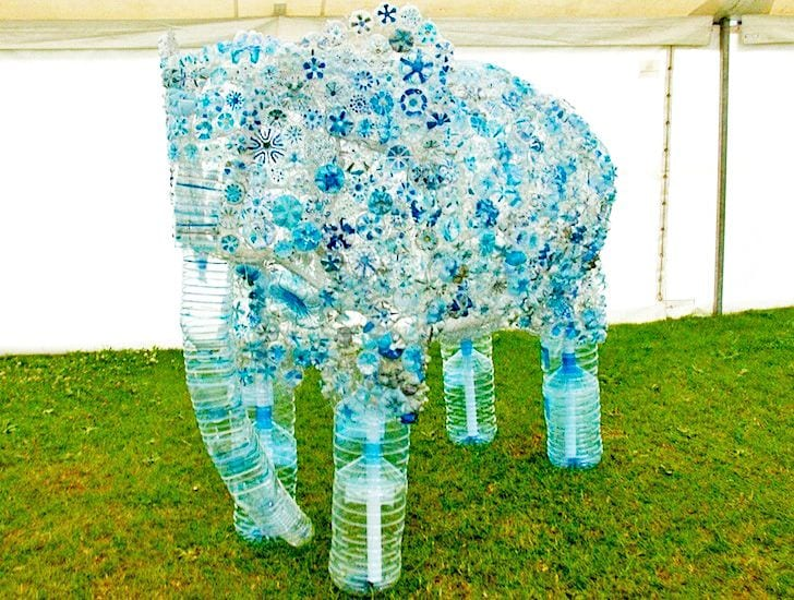 What happens when we recycle plastic bottles kiwireport for Things to do with plastic bottles