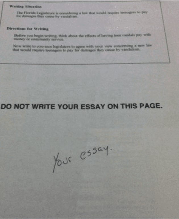 school of fail best essay ever