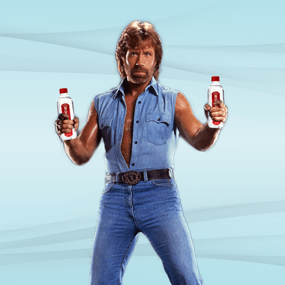 How to Appreciate Chuck Norris