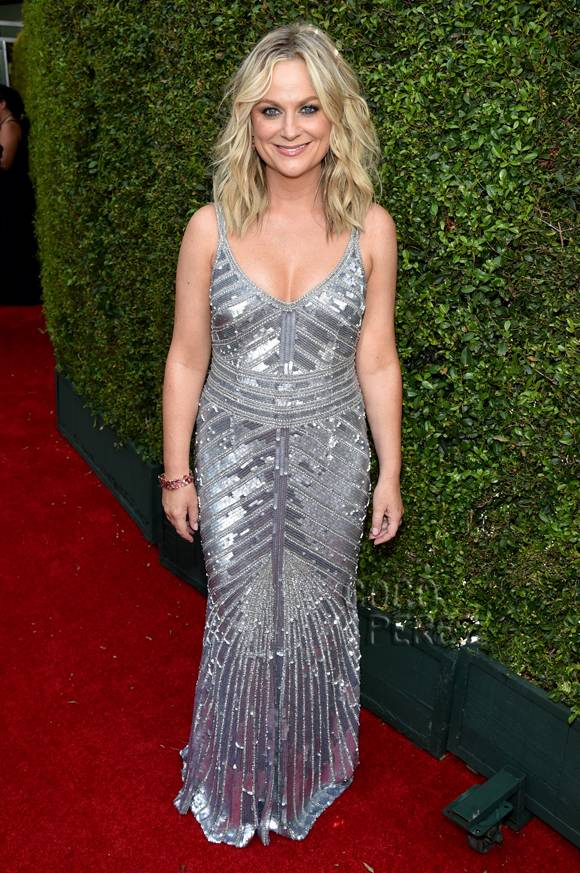 emmy-awards-emmys-2014-amy-poehler-red-carpet__oPt