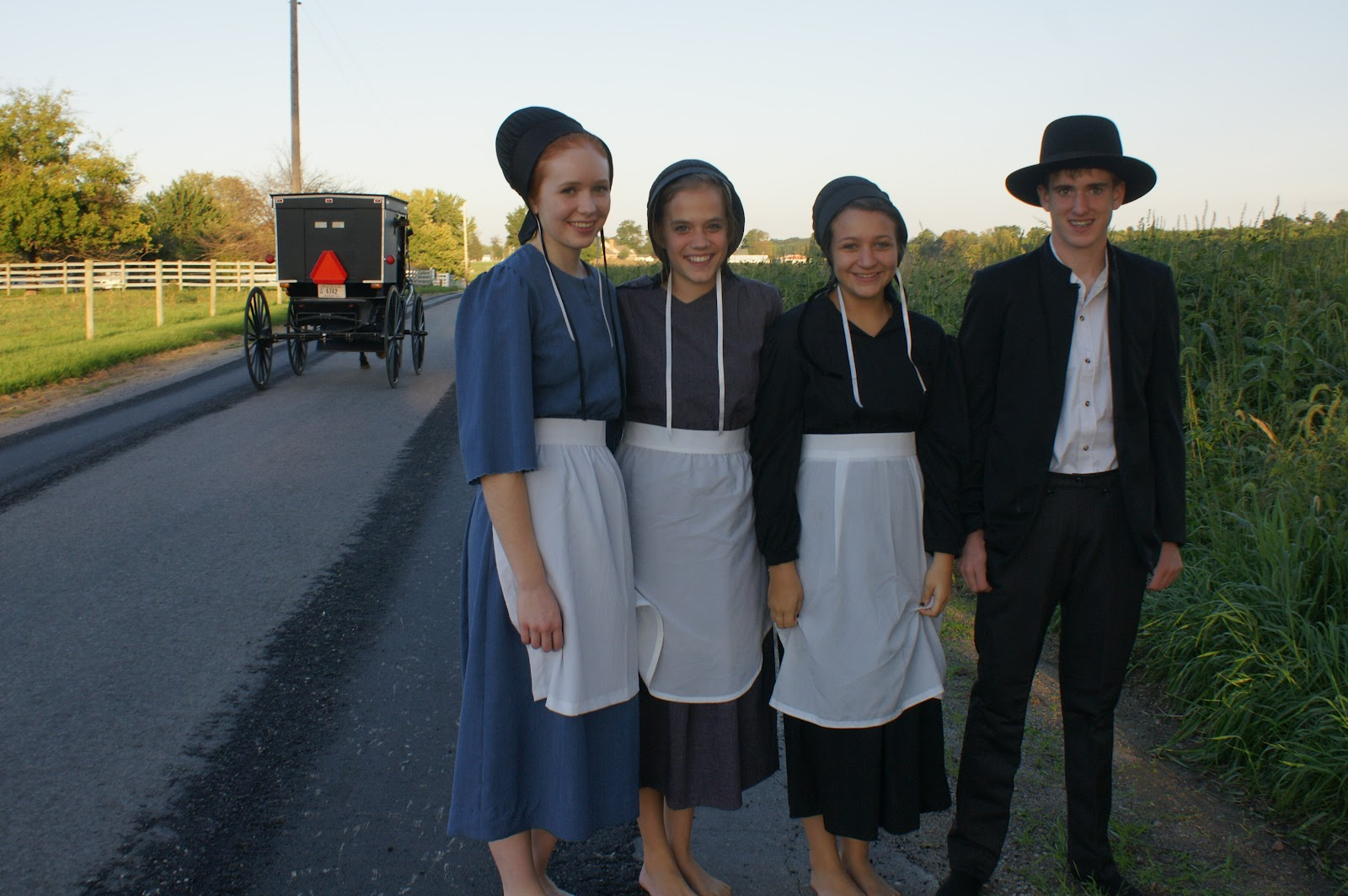 Facts About the Amish You Need to Know | KiwiReport