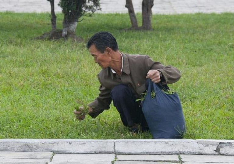 north-korea-photographs-starvation-768x537