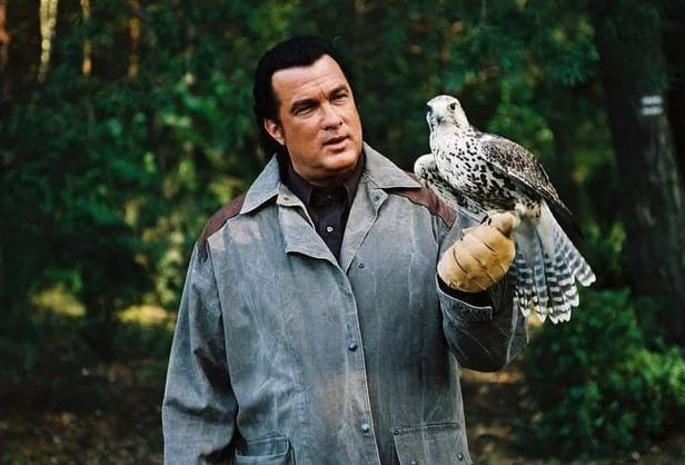 The many faces of Steven Seagal | KiwiReport