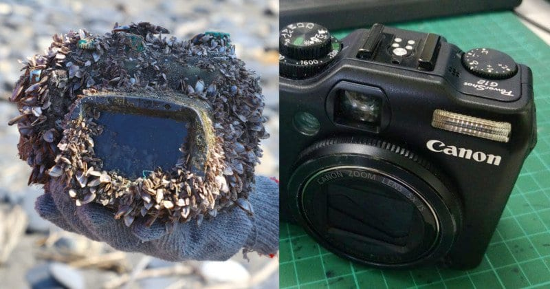 The incredible story of a camera lost at sea | KiwiReport