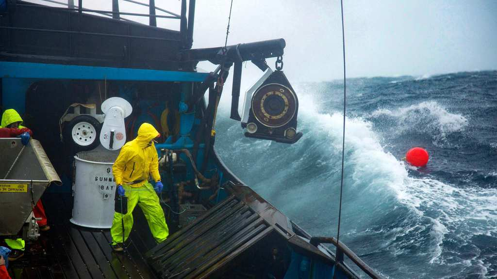 everything you ever wanted to know about the deadliest catch